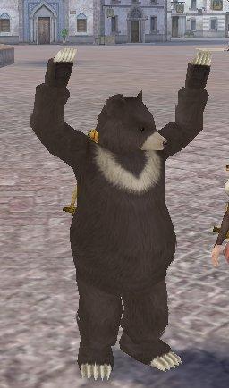 デブちん熊君