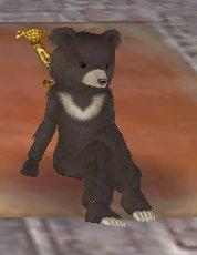 座るミニ熊